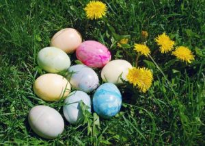 Painted easter eggs - image copyright http://naturemoms.com/blog/