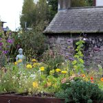 irish-cottage-gardens-background1