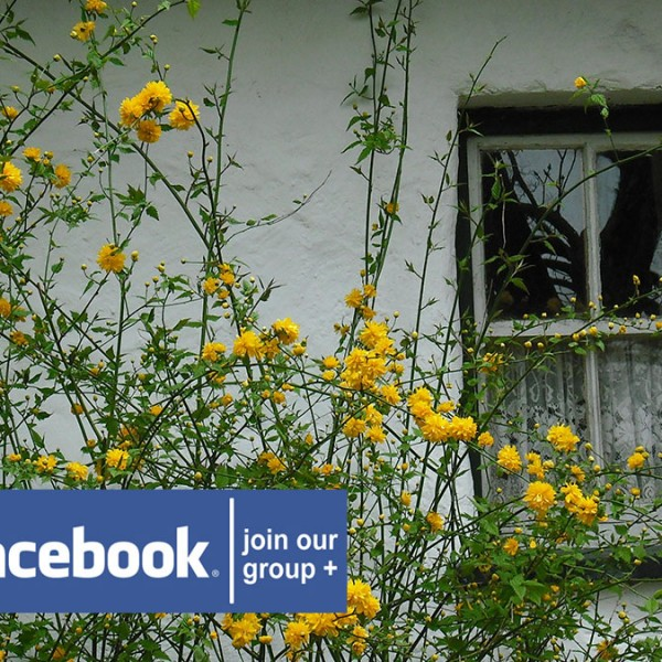 Irish-Cottage-Renovators-Group-Facebook