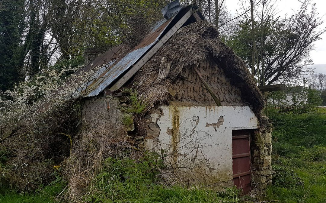 Old Thatch Under A Tin Roof